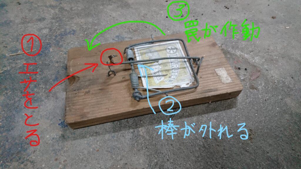 バネ式ネズミ捕り器 使い方